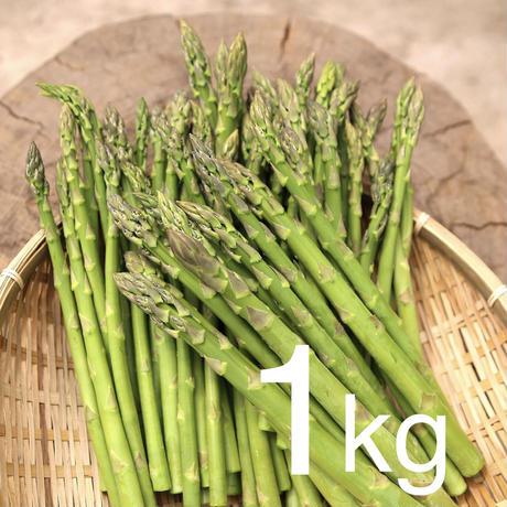 農家直送☆あま〜い朝採れアスパラガス約1kg L〜2Lサイズ
