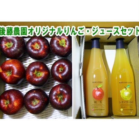 おまかせ長野県産りんご9個&りんご100%ジュース2本セット☆農家直送