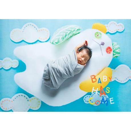 ★おうち写真館 babybear sora *名入れ無し [bdi]