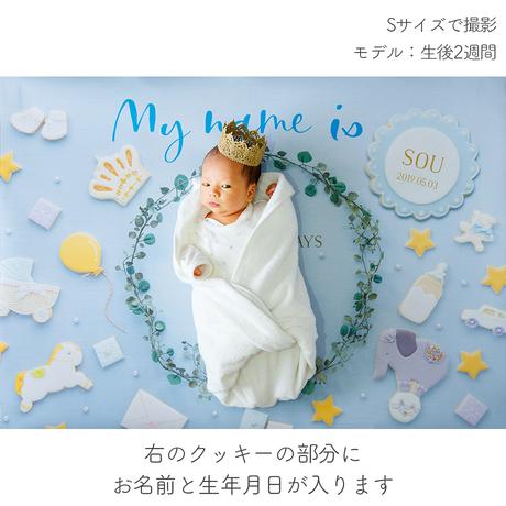 ★おうち写真館   happy-cookie  GENTLE BLUE *名入れあり [bdi]