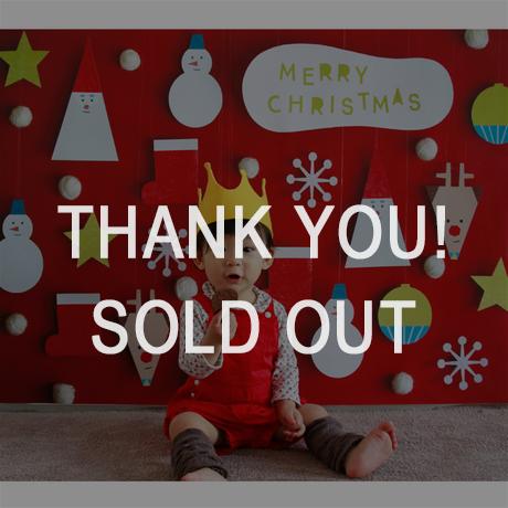 【最終受付】 おうち写真館 Santa & friends  RED Mサイズ(縦841 × 横1189 mm)