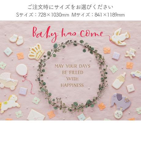 ★おうち写真館   happy-cookie  SWEET PINK *名入れ無し [bdi]