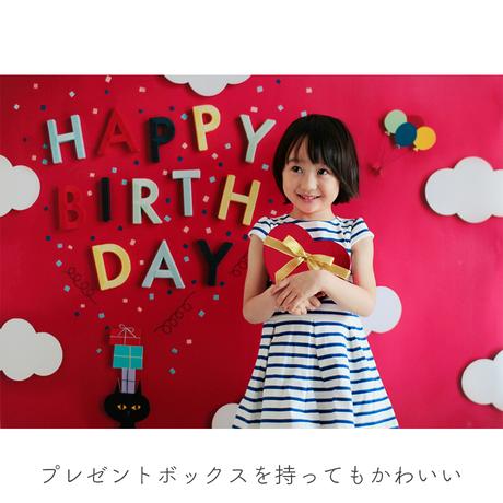 ★おうち写真館 cat vividpink [bdi]
