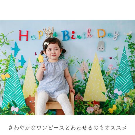 ★おうち写真館+S  botanical [bdi]