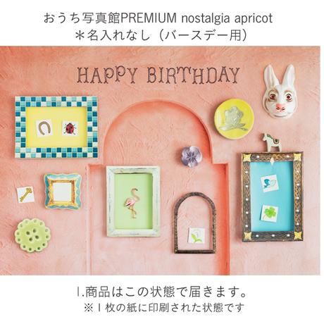★おうち写真館PREMIUM  nostalgia apricot *名入れ無し [bdi]