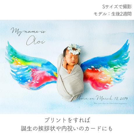 ★おうち写真館  Lovely  angel *名入れあり [bdi]