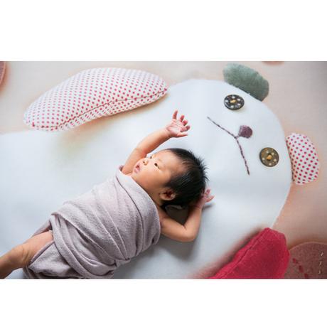 ★おうち写真館 babybear hidamari *名入れ無し [bdi]