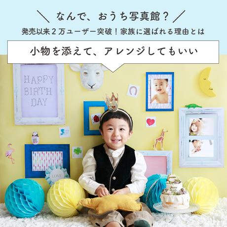 ★おうち写真館 cat vividpink