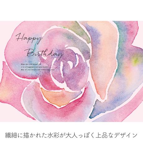 ★おうち写真館 rose [bdi]