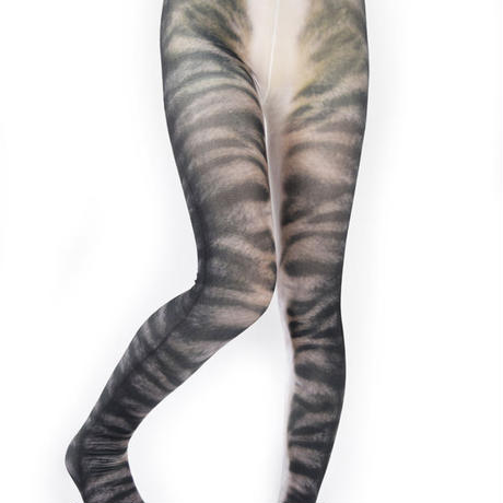 MDT-010  Mad Science tights<キジトラ/Tabby cat>