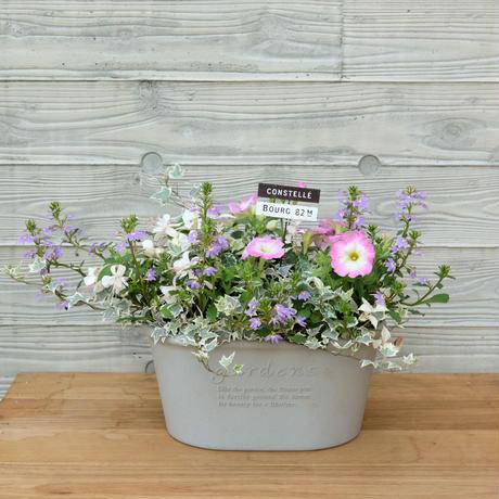 壁掛けにもできる淡いお花の寄せ植え