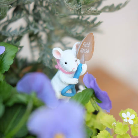 かわいいネズミさんが育てるチューリップの球根入り寄せ植え