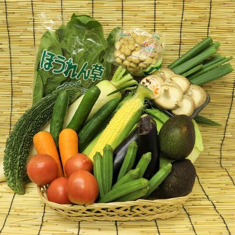 今、一番おいしい野菜セット(4人~5人前)