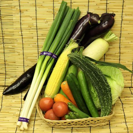 今、一番おいしい野菜セット(2人~3人前)