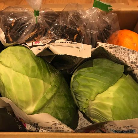 農家直送 おまかせ野菜セット