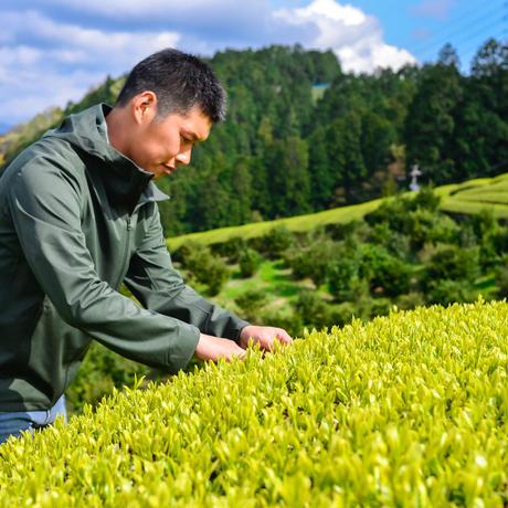杉山貢大農園の煎茶「静7132」桜葉の香りがするお茶!1袋50グラム