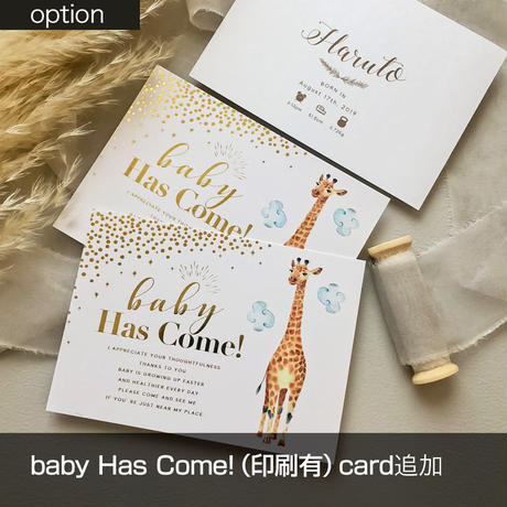 OPTION baby Has Come!(印刷無)card追加
