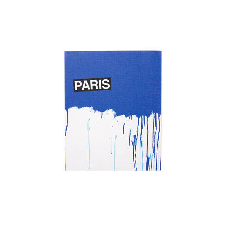 Canvas Print / PARIS