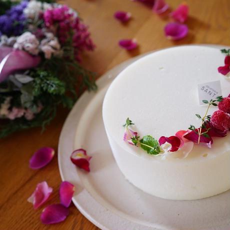 〈SANTi×gui〉Christmas cake set