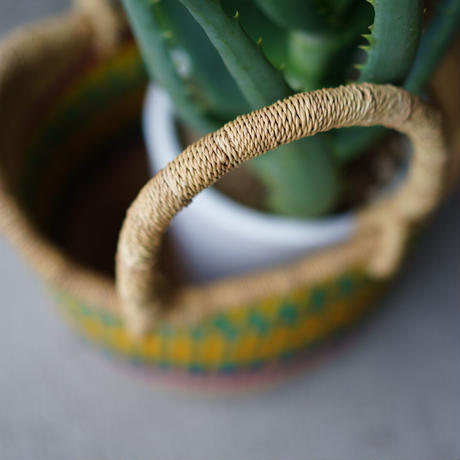 <CLOUDY×gui>Aloe basket set(colorful)