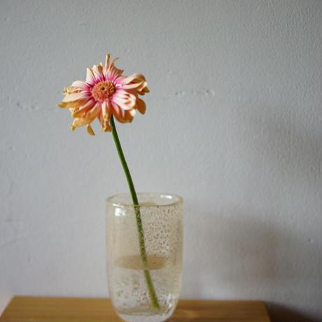"<Henry Dean>Flower vase ""joe""ビジュー"