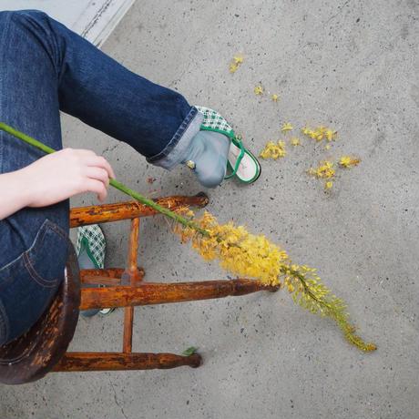 <laceflowersocks×guiflower>SOCKS SET(Healing green )