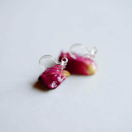 【petal series】rose(pierce/earrings)