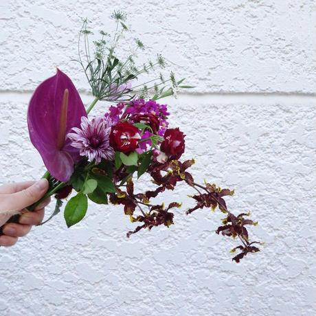 <laceflowersocks×guiflower>SOCKS SET(Energy red )