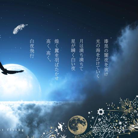【 受注生産会 】2017年1月3日(火)~2017年1月27日(金)まで ー 箔押しギャラクシー 『 白夜飛行 』