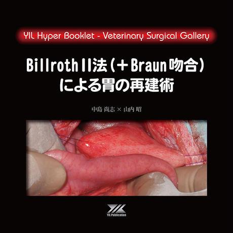 YILハイパーブックレット ヴェテリナリサージカルギャラリー「BillrothⅡ法(+Braun吻合)による胃の再建術」