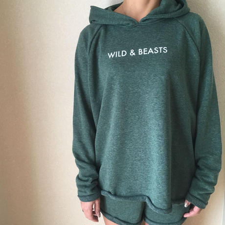 WILD AND BEASTS セットアップ