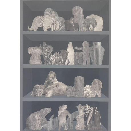 shelf #13 / 森 丈人