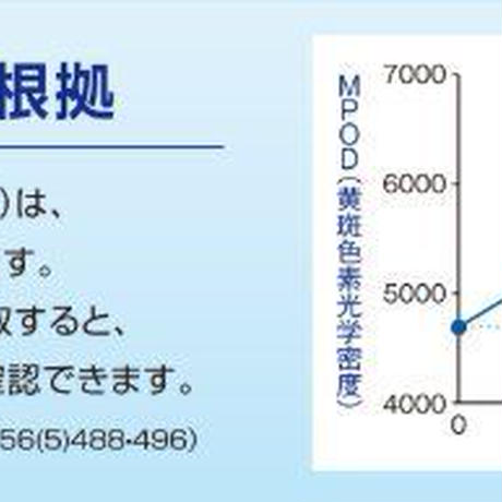 【初売りスーパーセール】ルテインサプリメント機能性表示食品「青い瞳」2箱セット