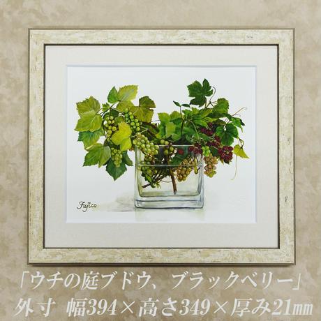 橋本不二子監修 額装作品 『ウチの庭-ブドウ、ブラックベリー』