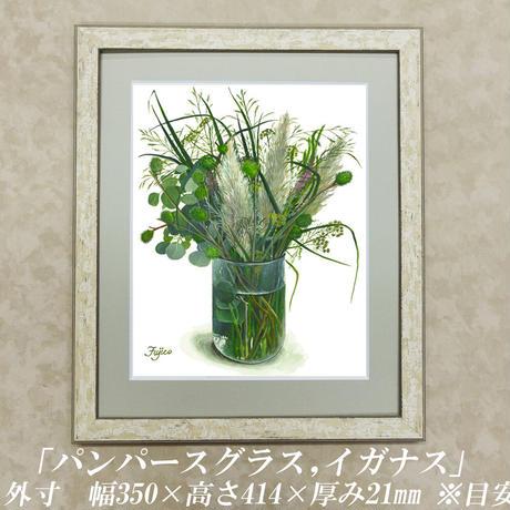 橋本不二子監修 額装作品 9月の新作 「パンパースグラス,イガナス」