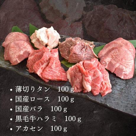 送料無料!色々楽しめる 焼肉お試しセット  500g【2種類のタレ付き】