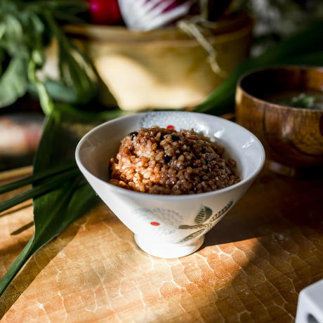 「はじめての酵素玄米ごはん」の会(130g×8個)