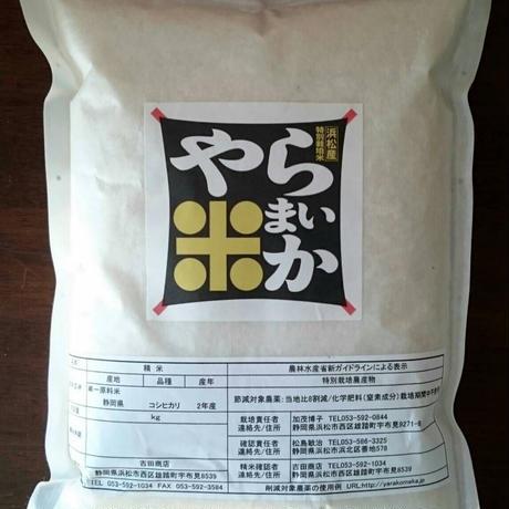 【イベント限定】まいかちゃんの「やら米か」1.5kg  ×3袋