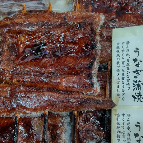 宮崎県産 鰻蒲串焼(80g×10串)[大高] 市場受取