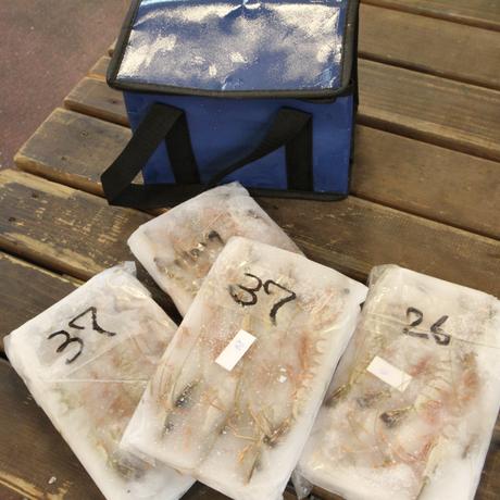 こだわり海老セット (容量:海老2種(各200g×2))[坪倉水産] 配送・送料込み