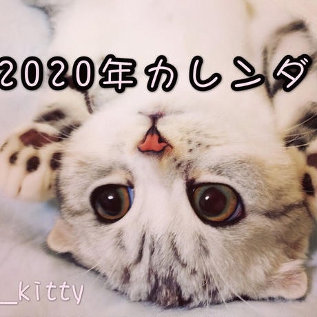 【送料無料】2020年『hanakitty』壁掛けカレンダー