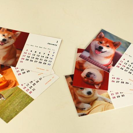 カレンダー2021(柴犬)