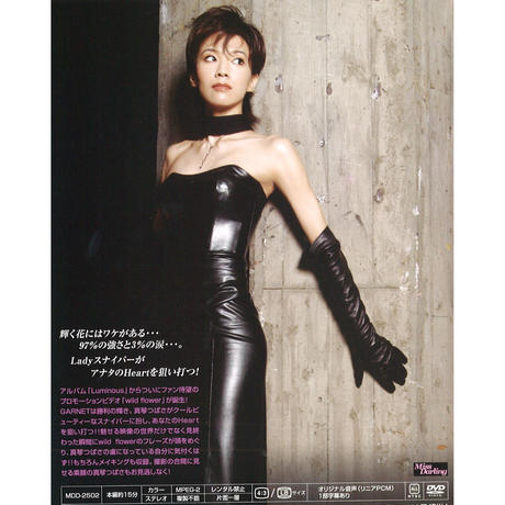DVD【wild flower (PV)】 6/5のライブで歌唱しました!!