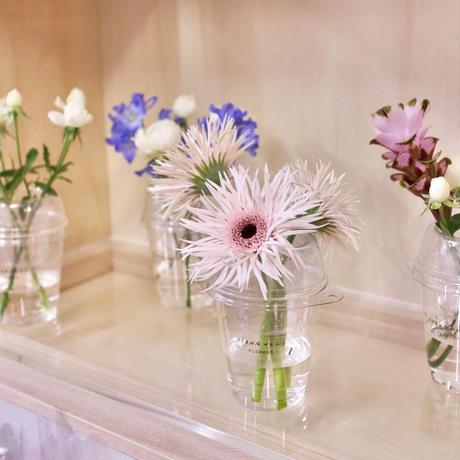 Cup flower Light  カップフラワーライト  店舗限定販売