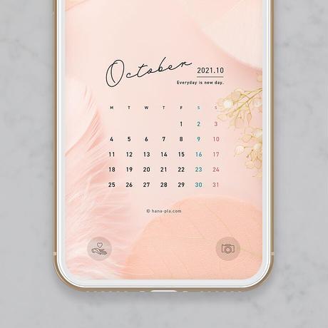 【10月】 おしゃれな羽モチーフのサーモンピンク スマホ壁紙カレンダー @hanapla