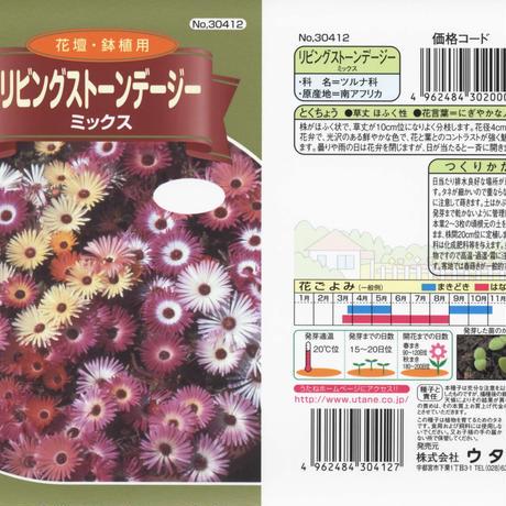 リビングストーンデージーミックス / 送料込 種セット 4g ギフト