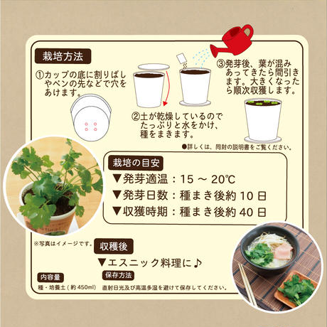 Natural Farm カンタン栽培キット/ パクチー 栽培セット