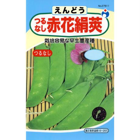 つるなし赤花きぬさやえんどう豆 / 送料込 26g ギフト