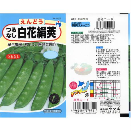 つるなし白花きぬさやえんどう豆 / 送料込 24g ギフト