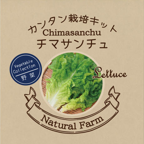 Natural Farm カンタン栽培キット/ チマサンチュ 栽培セット